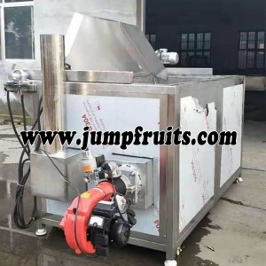 French Fries Equipment
