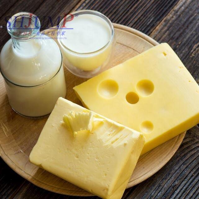 Turn Key Small Diary Milk Product Process Cheese Processing Machine