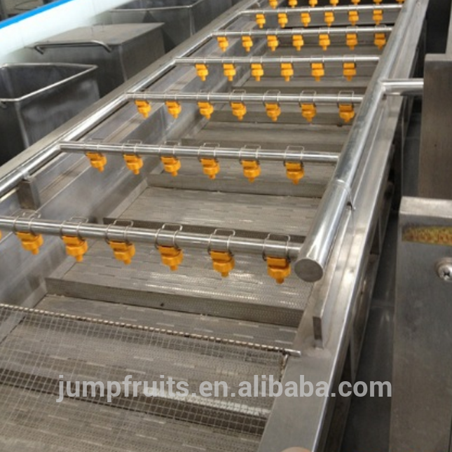 2-50T Capacity Fruit And Vegetable Cleaning Washing And Sorting Machine