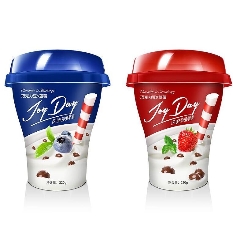 Industrial Frozen Fruit Yogurt Production Line