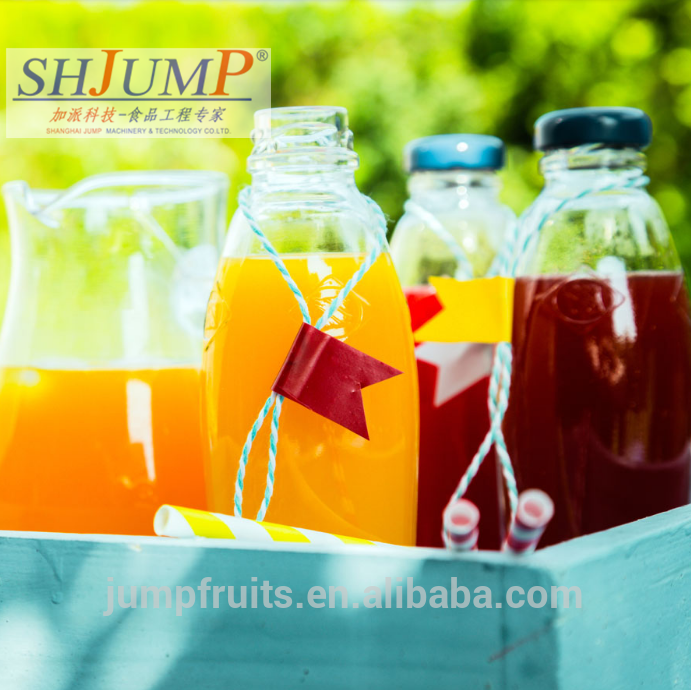 Pineapple Orange Fresh Fruit Concentrate Juice  Making Machine