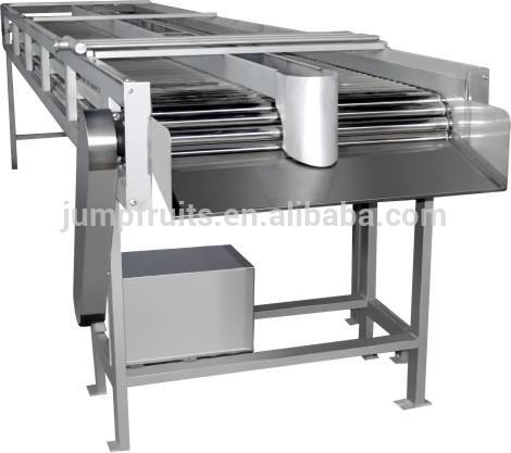 Lemon Sorting Machine