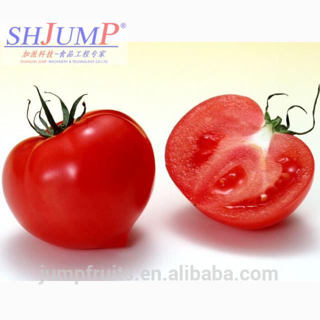 Cold Break Brix 36%-38% Tomato Paste Concentrate System Tomato Jam Processing Line