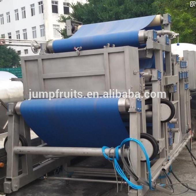 High Profitable Rambutan Beverage Production Line