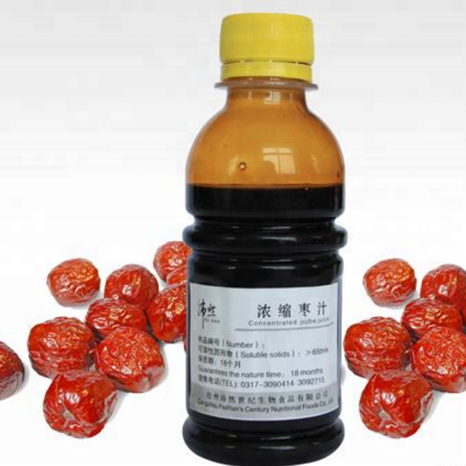 Date Syrup Paste Juice Processing Line