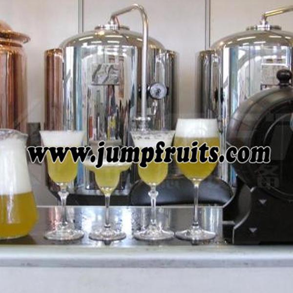 Fruits Juice Machine