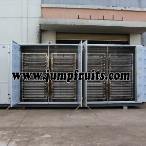 Fruits And Vegetables Drying Packing Whole Line