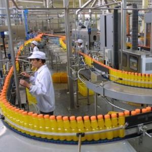 High Proficiency Economical Grape Pomegranate Juice Production Line