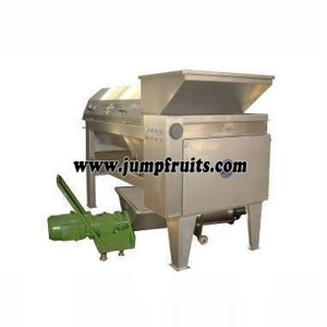 Olive, plum, bayberry, peach, apricot, plum processing machine and production line