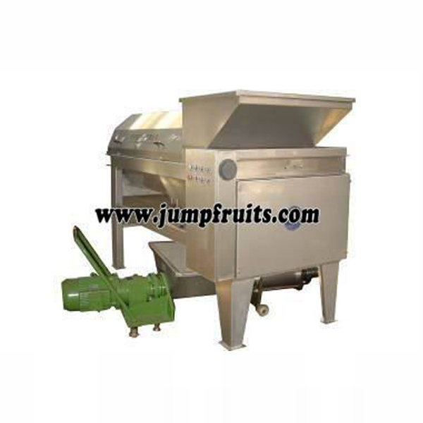 Olive, plum, bayberry, peach, apricot, plum processing machine and production line Featured Image