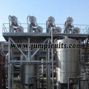 Mango, pineapple, papaya, guava processing machine and production line