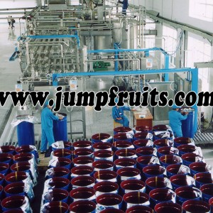 Apple, pear, grape, pomegranate processing machine and production line