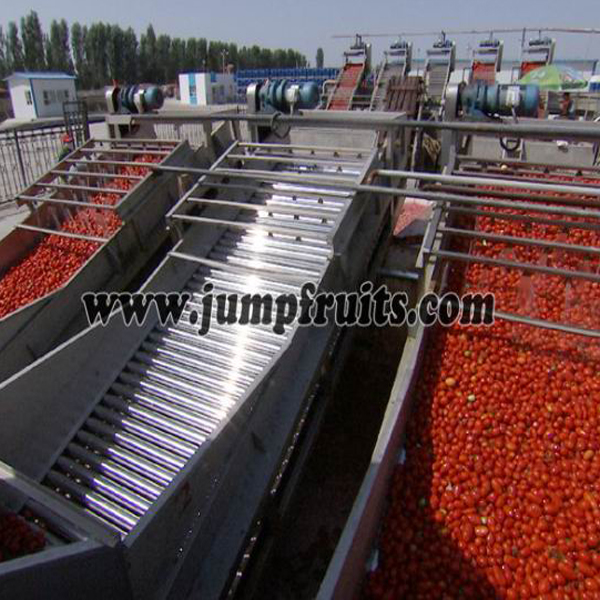 toamto sauce production line