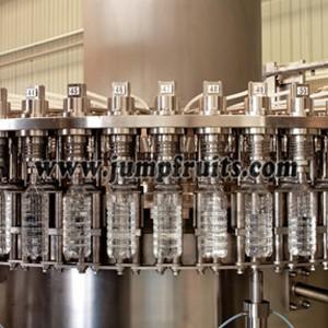 Pure Water Prodution Machine