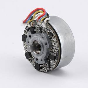 BL4525 24V 23W 23W无刷直流电动机3200RPM用于筋膜按摩枪按摩设备备件BLDC电机